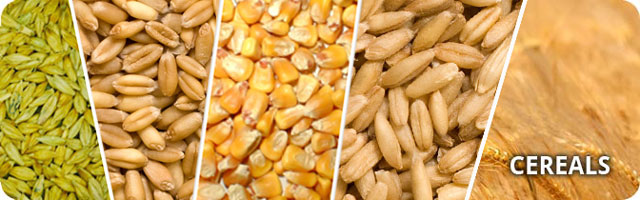 northern gate cereals